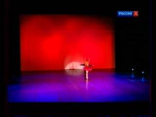 Па де де Дон Кихот. Кристина Кретова и Михаил Мартынюк