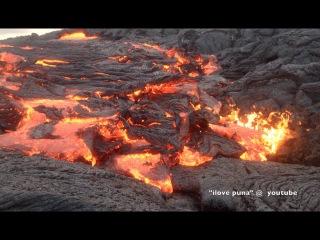 Лавовые поля вулкана Килауэа (май 2015)