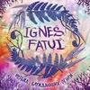 Концерт Ignes Fatui 19.02.2015