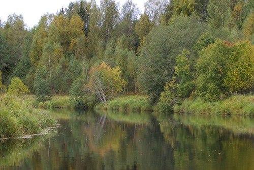 Купить участок земли в селе Русская Сорма