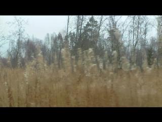 Ягельдень 01.11.15 для северных оленей РКЦ