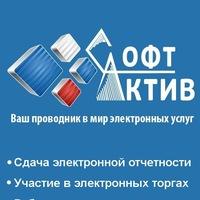 Логотип Софт-актив: Тендеры. Системы сдачи отчетности