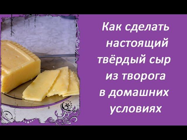 Как приготовить сыр в домашних условиях рецепт