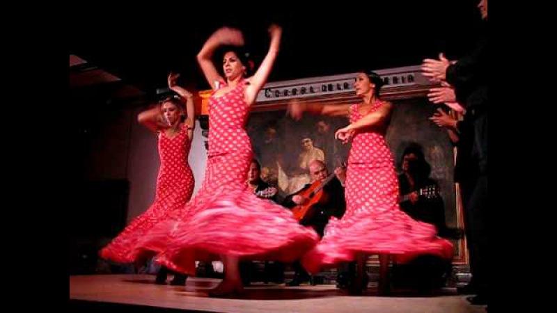 Flamenco show - Corral de la Moreria