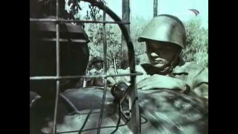 Война во Вьетнаме. Танец со смертью