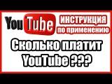 Сколько платит YouTube за 1000 просмотров | За что платит YouTube