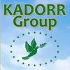 KАDORR Group: официальная группа