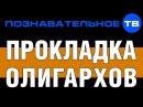 Прокладка олигархов Познавательное ТВ Николай Стариков