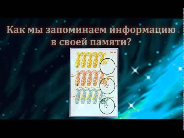 Сущность и Разум.Николай Левашов.