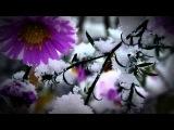 Елена Фролова - Греческая песня