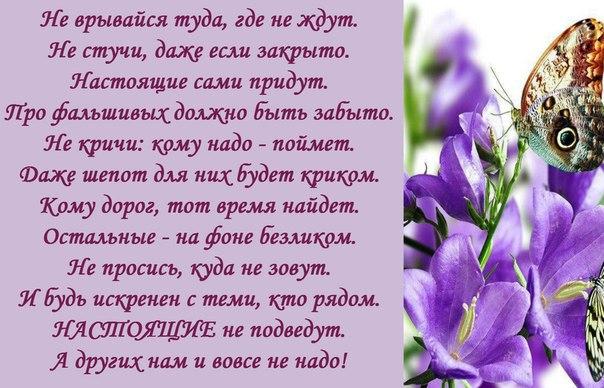 http://cs624318.vk.me/v624318056/487ac/-VAuxpToiwQ.jpg