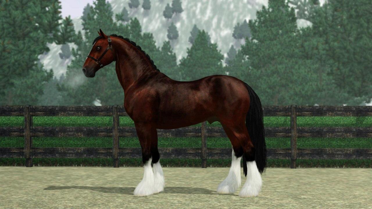 Регистрация лошадей в RHF 2 - Страница 6 M6KnQKfgIWg