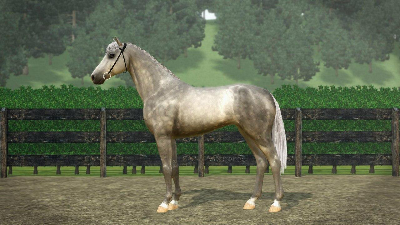 Регистрация лошадей в RHF 2 - Страница 6 IPzgu4-ONdo