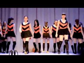 Скандальный танец пчёлок в Оренбурге