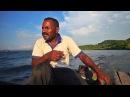 Биотопы озера Сентани. Запад острова Новая Гвинея