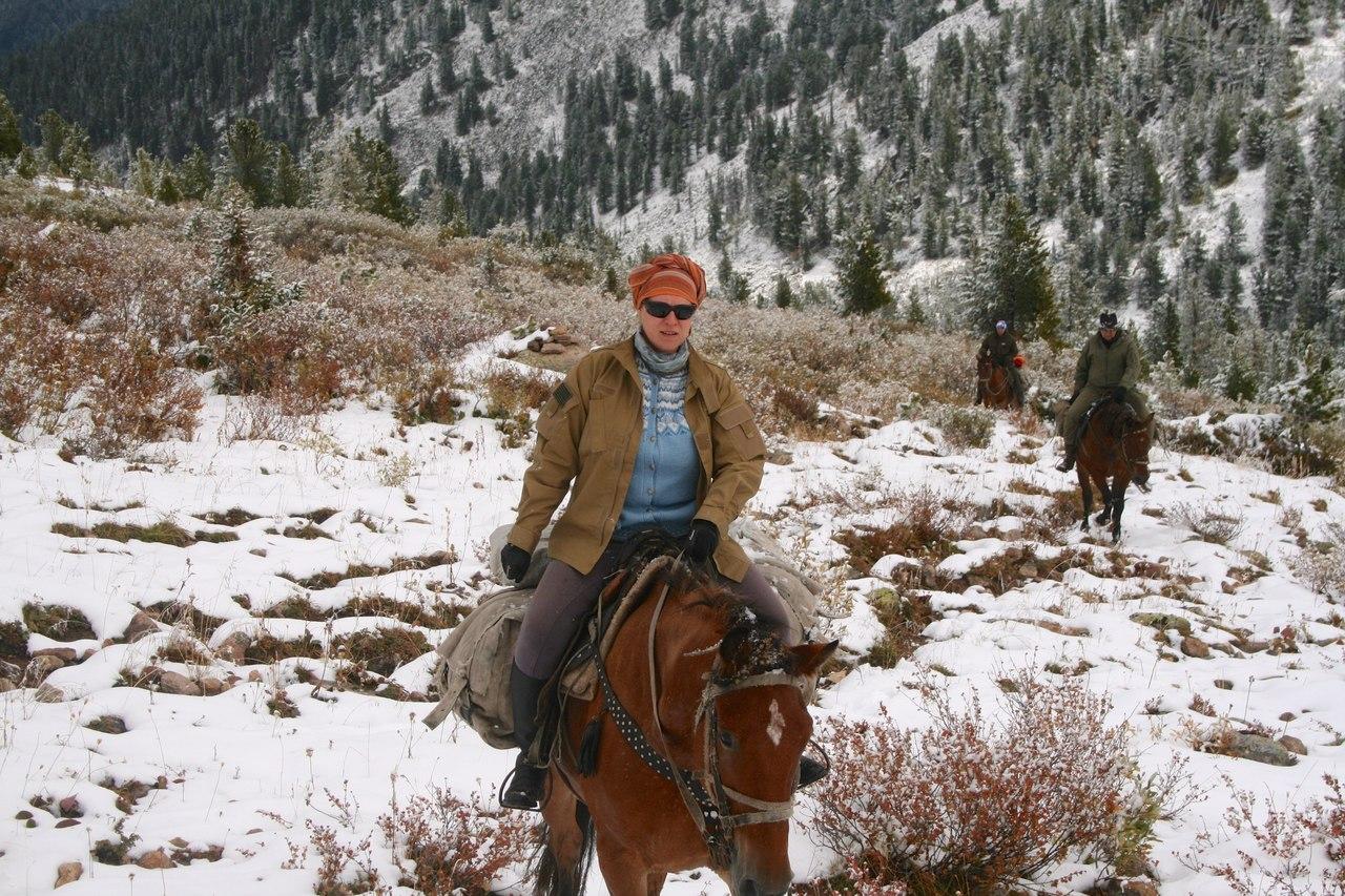 лошади, поход на ложади