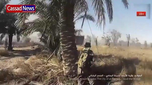 Боевик ИГИЛ от первого лица 18+