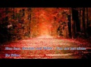 NICO feat SINCLAIR AND WILDE You Are Not Alone By Ethos