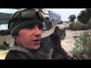 Лёлик и Болик часть 2. г. Луганск Ополченцы забирают найденных котят в расположение.