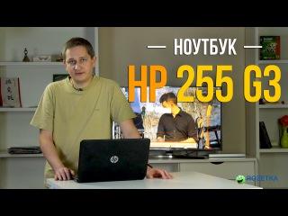HP 255 G3: обзор ноутбука