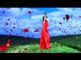 Shahzoda - Kechalar Шахзода - Кечалар