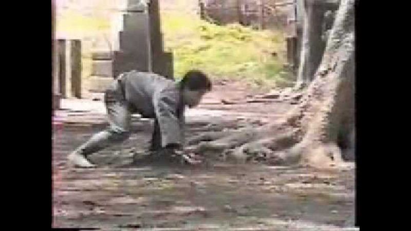 Hatsumi Masaaki Junan Taiso Hicho Jutsu Bujinkan Soke
