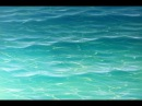 How To Paint Tropical Water Paint Recipes with Mark Waller