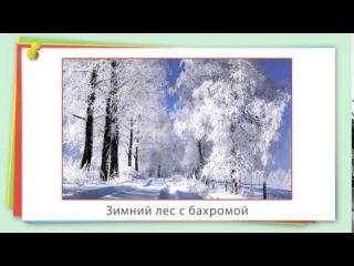Общее понятие о склонении имён существительных | урок 21, русский язык 3 класс
