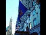 """! MY MOST HAPPY MONDAY IN MY LIFE ! ♥ :-) ♥ ! ! APRIL 6 ! NEW YORK ! MANHATTAN ! CENTRAL PARK ! * МОЙ САМЫЙ СЧАСТЛИВЫЙ ПОНЕДЕЛЬНИК В ЖИЗНИ…"""""""