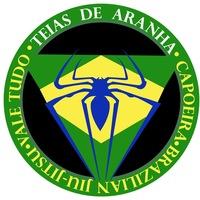 Логотип Teias De Aranha
