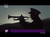 Avicii — Hey, brother | Авичи — Эй, брат! (Муз-ТВ [Теперь понятно!])