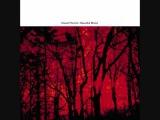Daniel Menche - Beautiful Blood