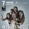 Animal ДжаZ/Брянск/ Rodeo/7 февраля