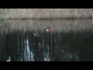 Удачная рыбалка на кружки в ноябре - ловля щуки осенью