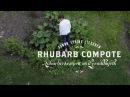 Sanna's Rhubarb Compote