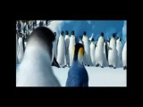 Happy Feet 2 - Penguins Riverdance - Lord of the Dance