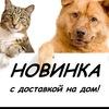 Доставка кормов ProPlan, Royal Canin, ProBalance