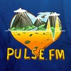 «Pulse.FM» - Hits Only