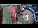 Японский трактор убирает зелёный лук