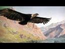 El Condor Pasa Paul Simon Garfunkel