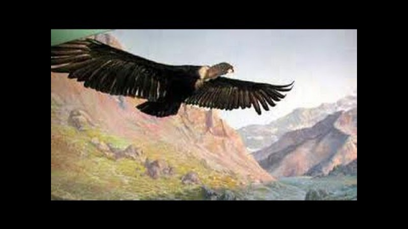 El Condor Pasa - Paul Simon Garfunkel