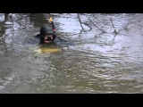 Подводная охота в Астрахани. Сом в завале. г/д