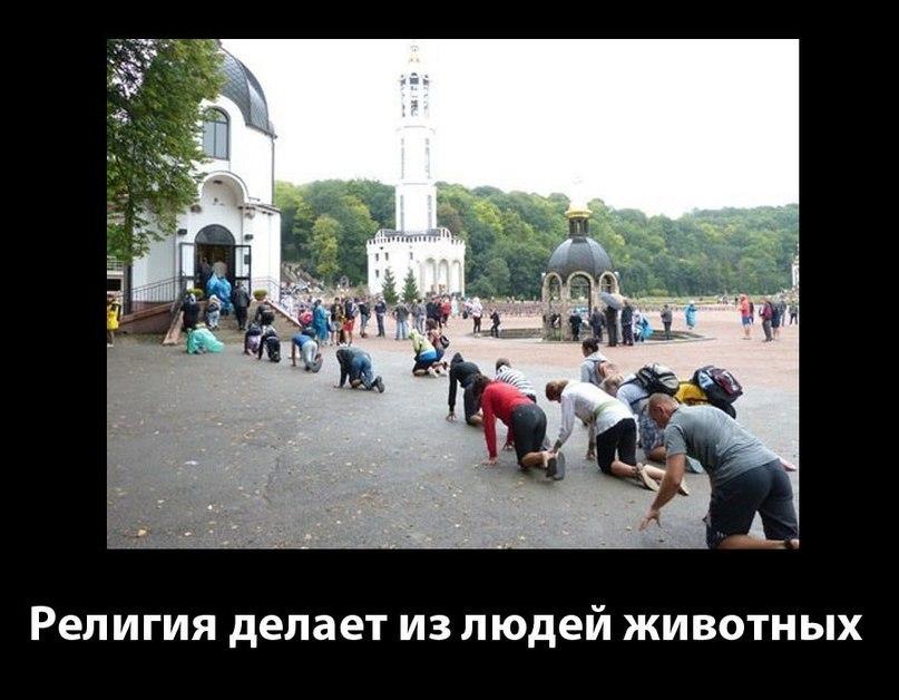 https://pp.vk.me/c624327/v624327535/3b698/mwfOm4qniTg.jpg