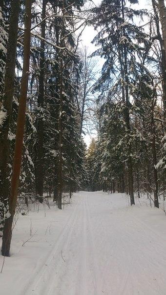В окрестностях Красногорской