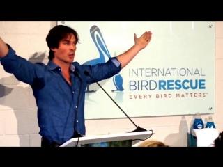 """Actor_activist Ian Somerhalder joins Dawn Wildlife to celebrate """"We All Love Wildlife"""""""