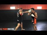 Basic Muay Boran Technique Spinning Back Elbow