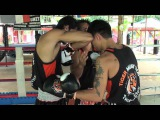 Tiger Muay Thai Techniques Parry Jab followed by elbow strike