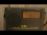 Tecsun PL600 + active antenna Degen 31MS vs. SilverCrest KH2029