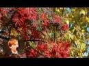 Есенин, Отговорила роща... / Esenin, Golden Grove subs by V. Chetin