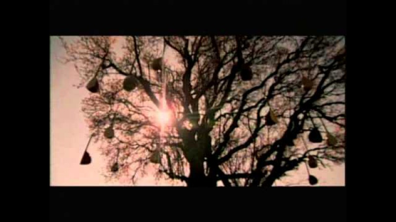Yavuz Bingöl - Tanrıdan Diledim